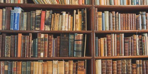 大量の本が収納された本棚