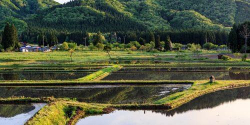自動運転技術による農業人材不足の解消